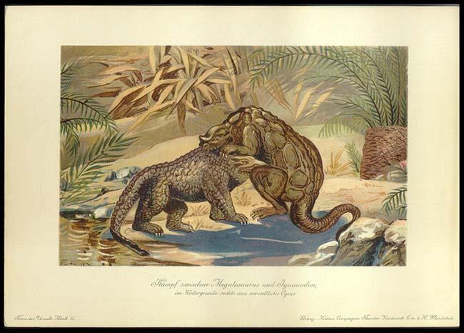 Megalosaurus and Iguanodon