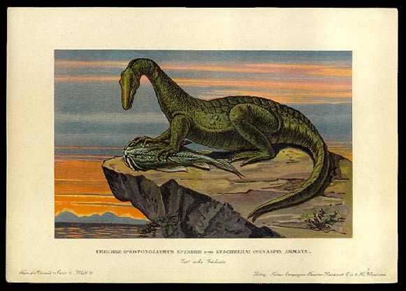 Protorosaurus and Menaspis