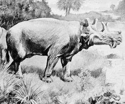 Uertatherium